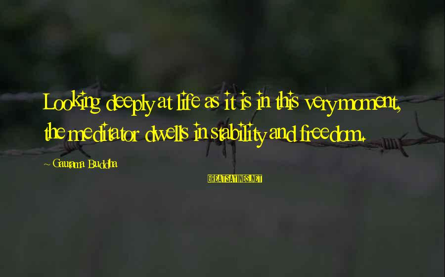 Stability In Life Sayings By Gautama Buddha: Looking deeply at life as it is in this very moment, the meditator dwells in