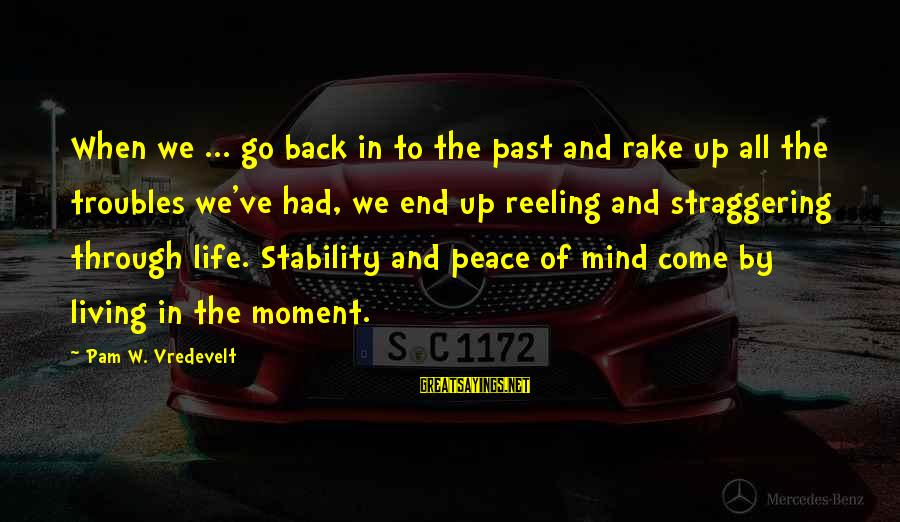 Stability In Life Sayings By Pam W. Vredevelt: When we ... go back in to the past and rake up all the troubles