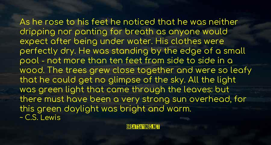 Standing Up Together Sayings By C.S. Lewis: As he rose to his feet he noticed that he was neither dripping nor panting