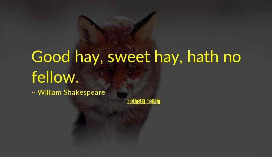 Starcraft 1 Vulture Sayings By William Shakespeare: Good hay, sweet hay, hath no fellow.