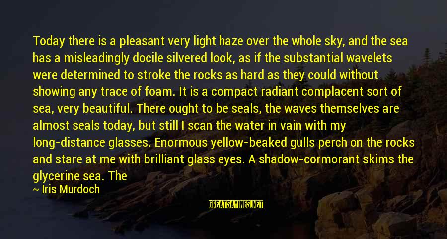Stare Into Your Eyes Sayings By Iris Murdoch: Today there is a pleasant very light haze over the whole sky, and the sea