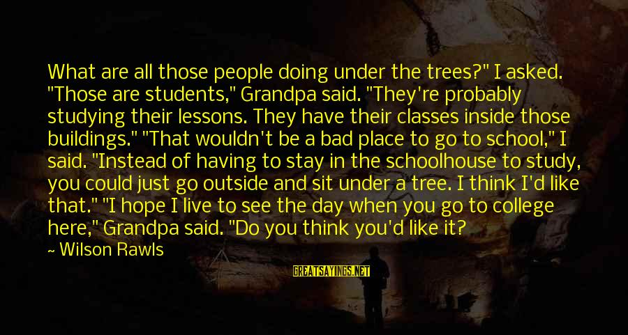 """Stay And Go Sayings By Wilson Rawls: What are all those people doing under the trees?"""" I asked. """"Those are students,"""" Grandpa"""