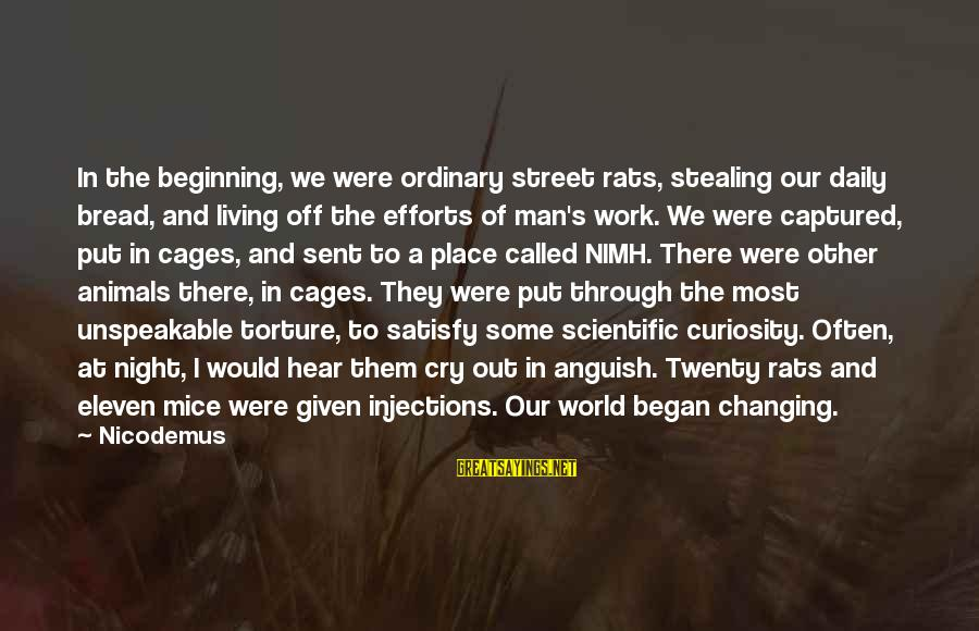 Stealing Sayings By Nicodemus: In the beginning, we were ordinary street rats, stealing our daily bread, and living off