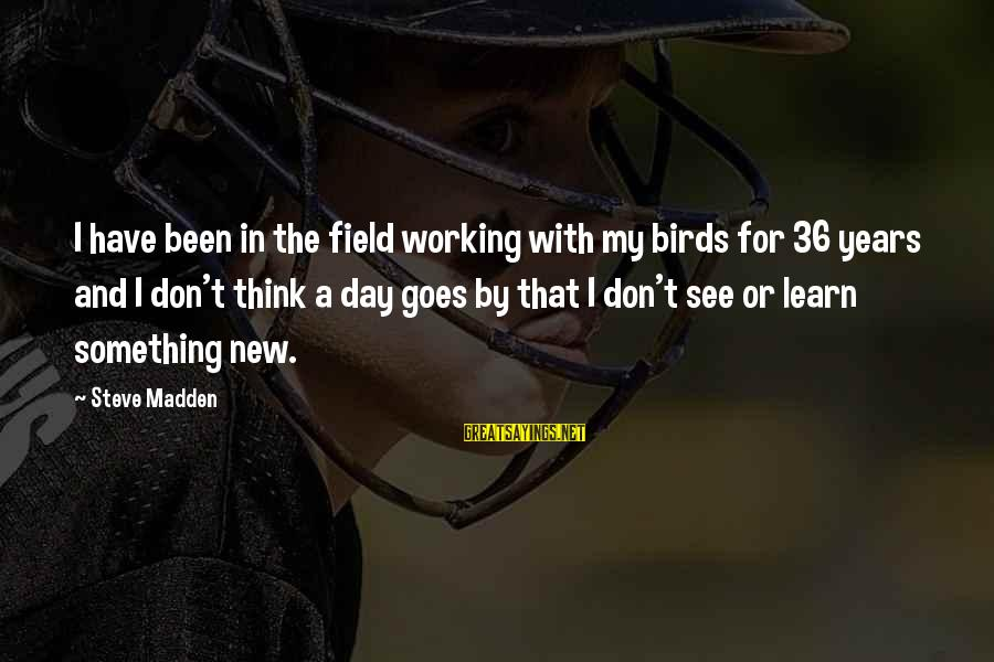 Steve Madden Sayings By Steve Madden: I have been in the field working with my birds for 36 years and I