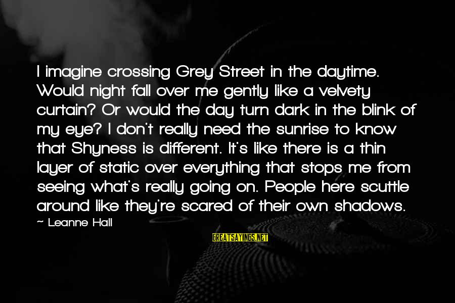 Stops Sayings By Leanne Hall: I imagine crossing Grey Street in the daytime. Would night fall over me gently like