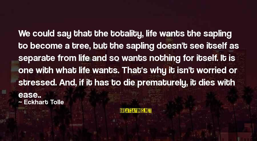 Stressed Life Sayings By Eckhart Tolle: We could say that the totality, life wants the sapling to become a tree, but