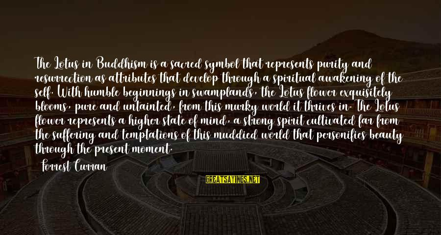 Strong And Motivational Sayings By Forrest Curran: The Lotus in Buddhism is a sacred symbol that represents purity and resurrection as attributes