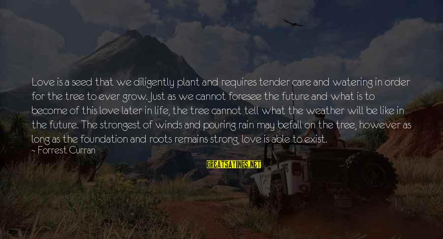 Strong And Motivational Sayings By Forrest Curran: Love is a seed that we diligently plant and requires tender care and watering in