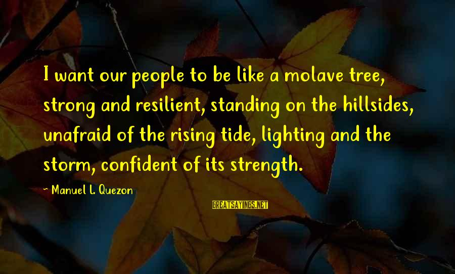 Strong Standing Sayings By Manuel L. Quezon: I want our people to be like a molave tree, strong and resilient, standing on