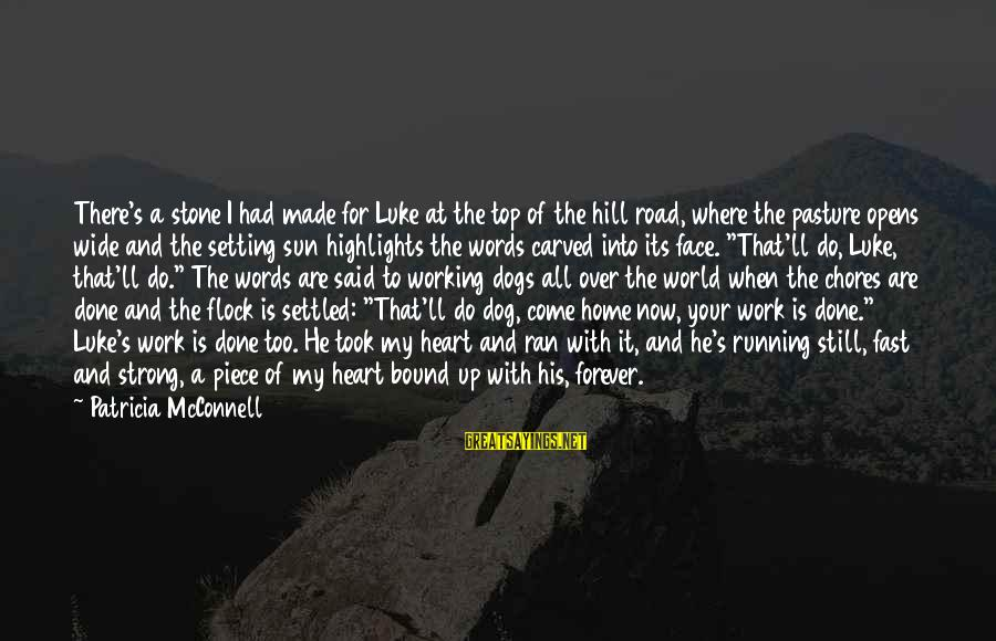 Strong Words For Sayings By Patricia McConnell: There's a stone I had made for Luke at the top of the hill road,