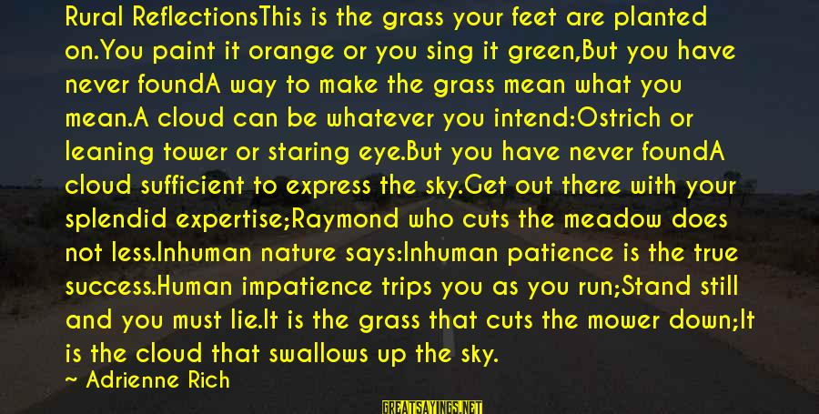 Success And Patience Sayings By Adrienne Rich: Rural ReflectionsThis is the grass your feet are planted on.You paint it orange or you