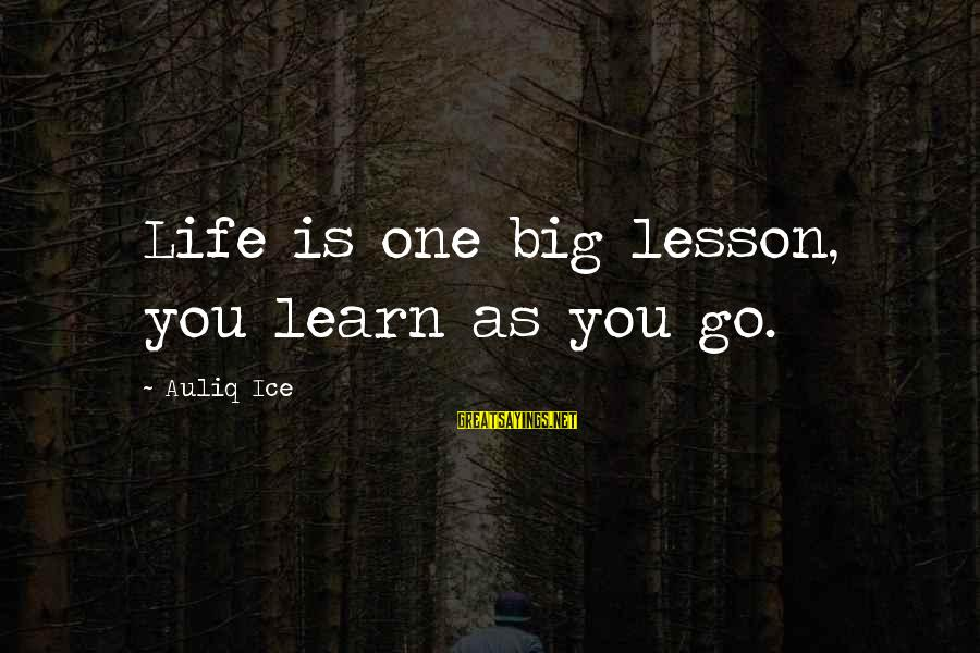 Success Sayings By Auliq Ice: Life is one big lesson, you learn as you go.