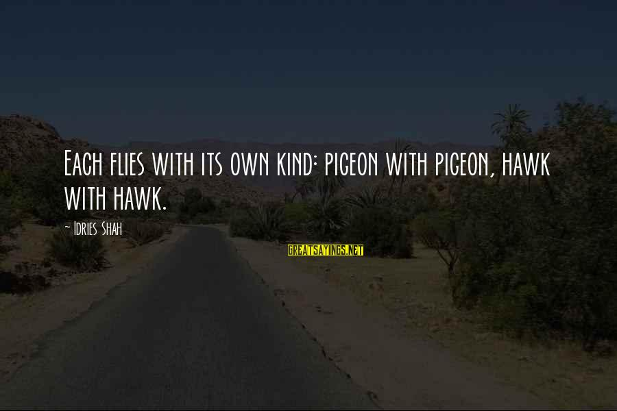 Sufi Sayings By Idries Shah: Each flies with its own kind: pigeon with pigeon, hawk with hawk.