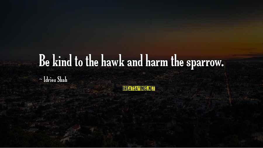 Sufi Sayings By Idries Shah: Be kind to the hawk and harm the sparrow.