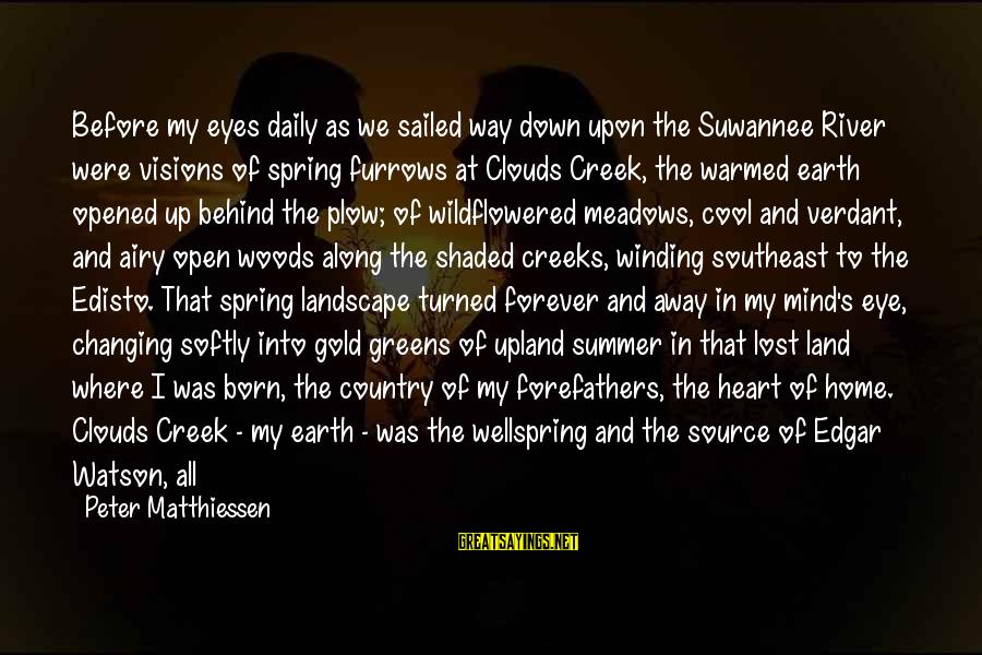 Summer Winding Down Sayings By Peter Matthiessen: Before my eyes daily as we sailed way down upon the Suwannee River were visions