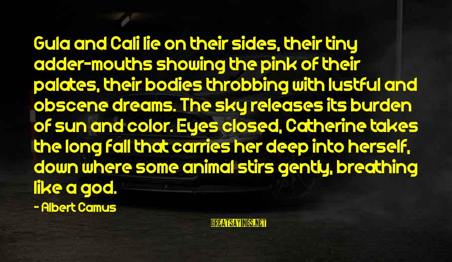 Sun God Sayings By Albert Camus: Gula and Cali lie on their sides, their tiny adder-mouths showing the pink of their