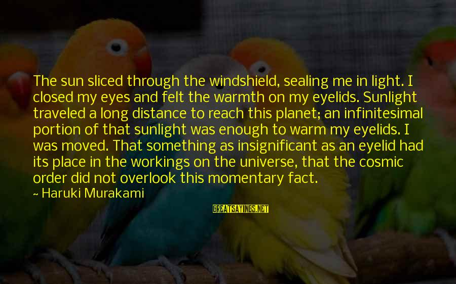 Sun In My Eyes Sayings By Haruki Murakami: The sun sliced through the windshield, sealing me in light. I closed my eyes and