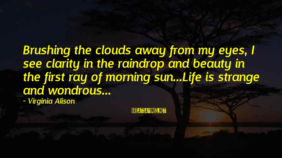Sun In My Eyes Sayings By Virginia Alison: Brushing the clouds away from my eyes, I see clarity in the raindrop and beauty