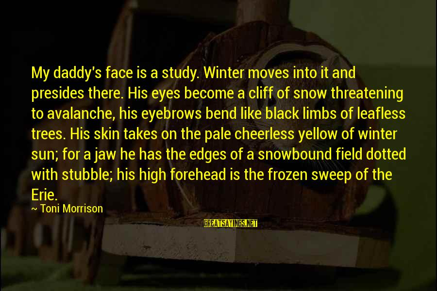 Sun On My Face Sayings By Toni Morrison: My daddy's face is a study. Winter moves into it and presides there. His eyes
