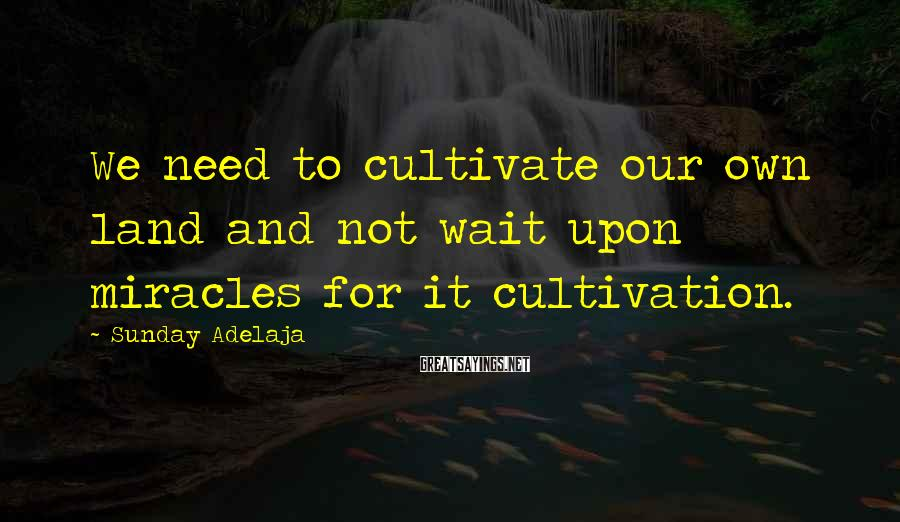Sunday Adelaja Sayings: We need to cultivate our own land and not wait upon miracles for it cultivation.