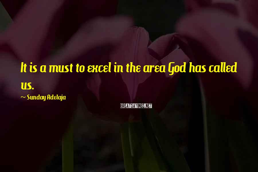 Sunday Adelaja Sayings: It is a must to excel in the area God has called us.