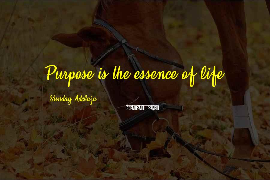 Sunday Adelaja Sayings: Purpose is the essence of life