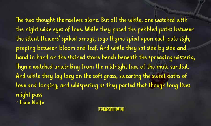 Sundial Sayings By Gene Wolfe: The two thought themselves alone. But all the while, one watched with the night-wide eyes