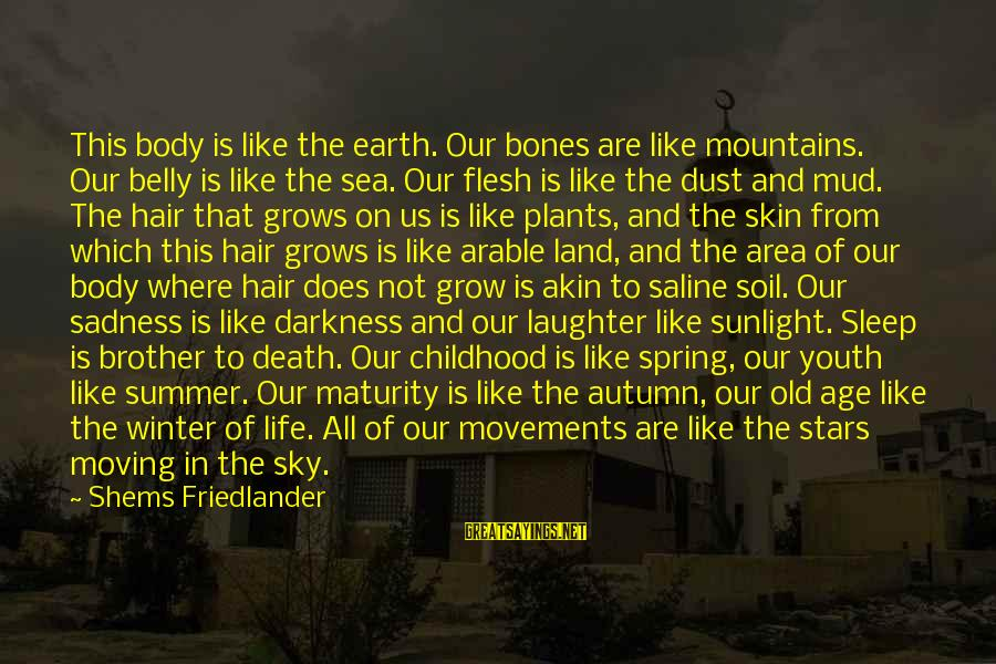 Sunlight And Darkness Sayings By Shems Friedlander: This body is like the earth. Our bones are like mountains. Our belly is like