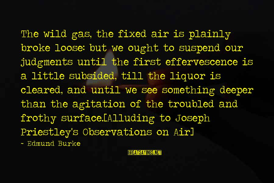 Surface Science Sayings By Edmund Burke: The wild gas, the fixed air is plainly broke loose: but we ought to suspend