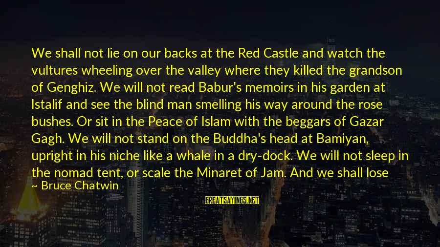 Sweet Bread Sayings By Bruce Chatwin: We shall not lie on our backs at the Red Castle and watch the vultures