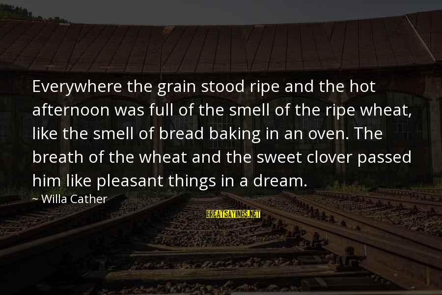 Sweet Bread Sayings By Willa Cather: Everywhere the grain stood ripe and the hot afternoon was full of the smell of