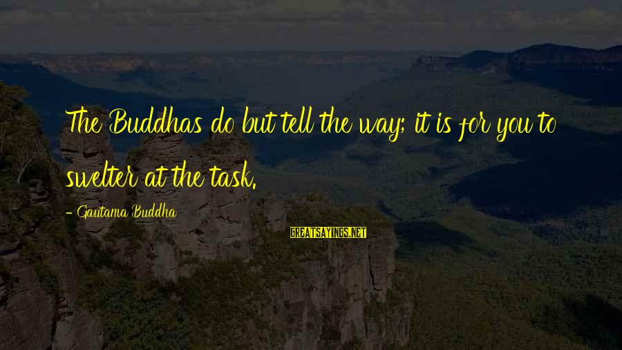 Swelter'd Sayings By Gautama Buddha: The Buddhas do but tell the way; it is for you to swelter at the