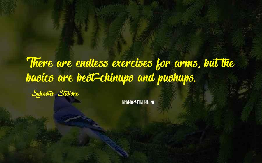 Sylvester Stallone Sayings: There are endless exercises for arms, but the basics are best-chinups and pushups.