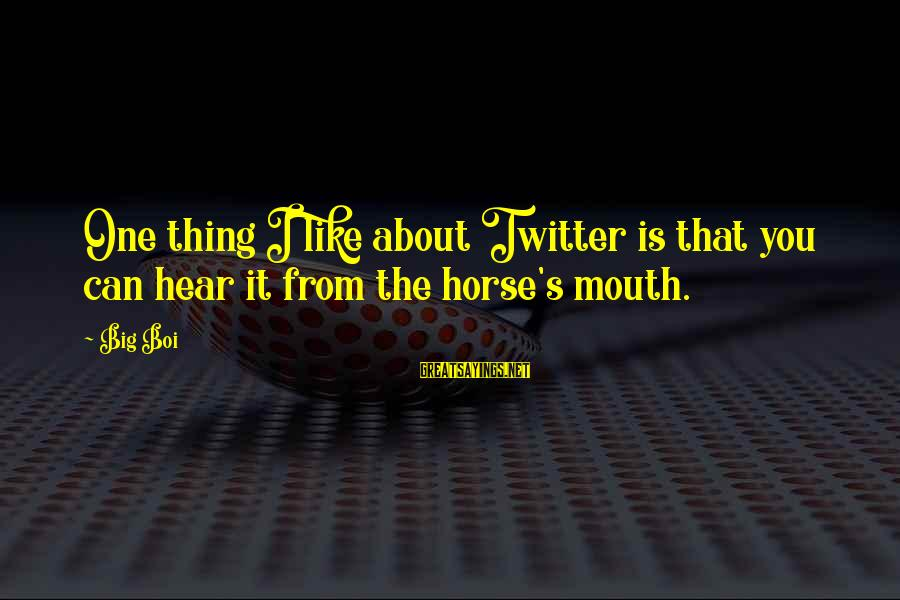 Sympathy For Death Of A Loved One Sayings By Big Boi: One thing I like about Twitter is that you can hear it from the horse's