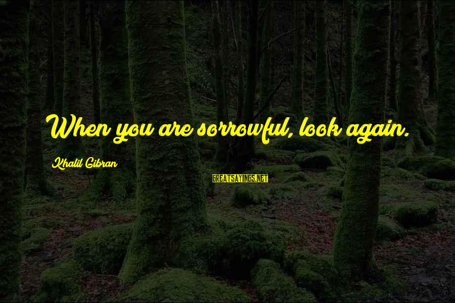 Sympathy For Death Of A Loved One Sayings By Khalil Gibran: When you are sorrowful, look again.