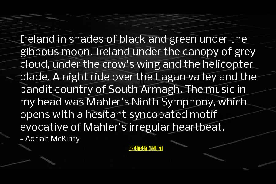 Syncopated Sayings By Adrian McKinty: Ireland in shades of black and green under the gibbous moon. Ireland under the canopy
