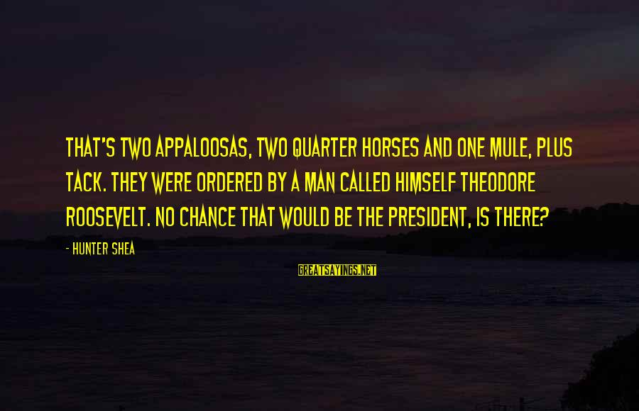 Tack Sayings By Hunter Shea: That's two Appaloosas, two quarter horses and one mule, plus tack. They were ordered by