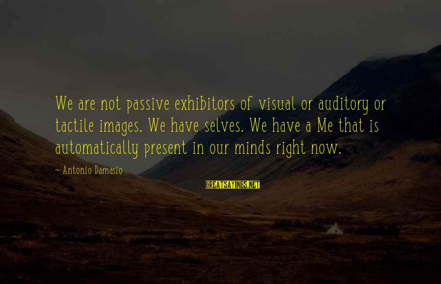 Tactile Sayings By Antonio Damasio: We are not passive exhibitors of visual or auditory or tactile images. We have selves.