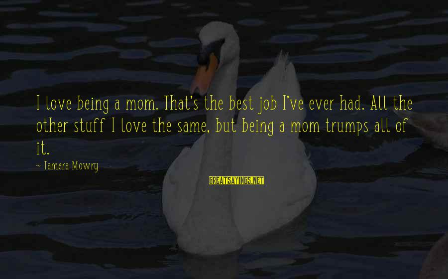 Tamera Mowry Sayings By Tamera Mowry: I love being a mom. That's the best job I've ever had. All the other