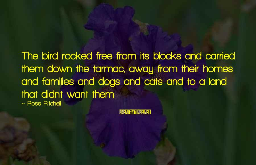 Tarmac Sayings By Ross Ritchell: The bird rocked free from its blocks and carried them down the tarmac, away from