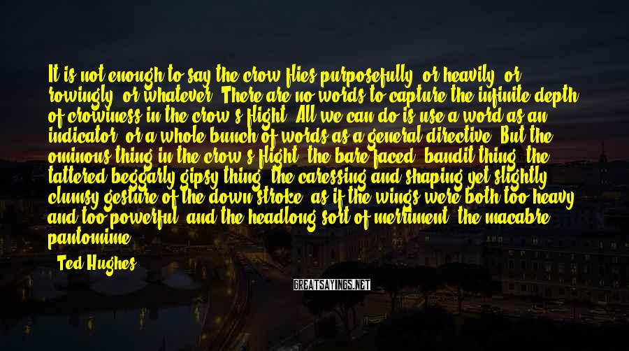 Ted Hughes Sayings: It is not enough to say the crow flies purposefully, or heavily, or rowingly, or