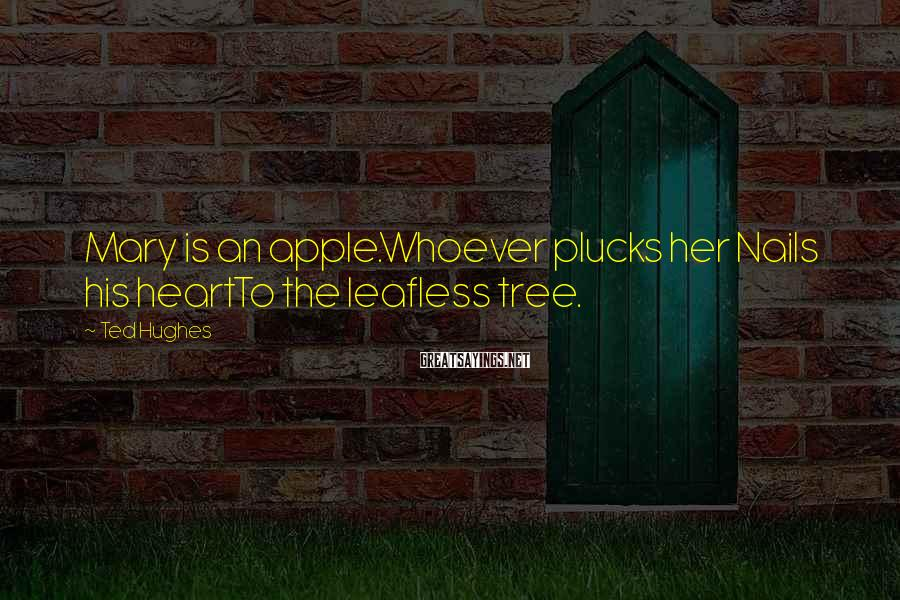 Ted Hughes Sayings: Mary is an apple.Whoever plucks her Nails his heartTo the leafless tree.