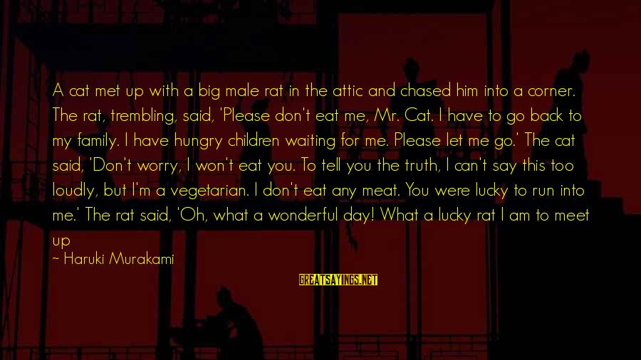 Tell Me Truth Sayings By Haruki Murakami: A cat met up with a big male rat in the attic and chased him