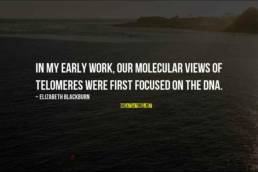 Telomeres Sayings By Elizabeth Blackburn: In my early work, our molecular views of telomeres were first focused on the DNA.