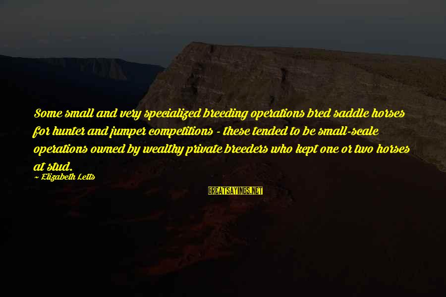 Tended Sayings By Elizabeth Letts: Some small and very specialized breeding operations bred saddle horses for hunter and jumper competitions