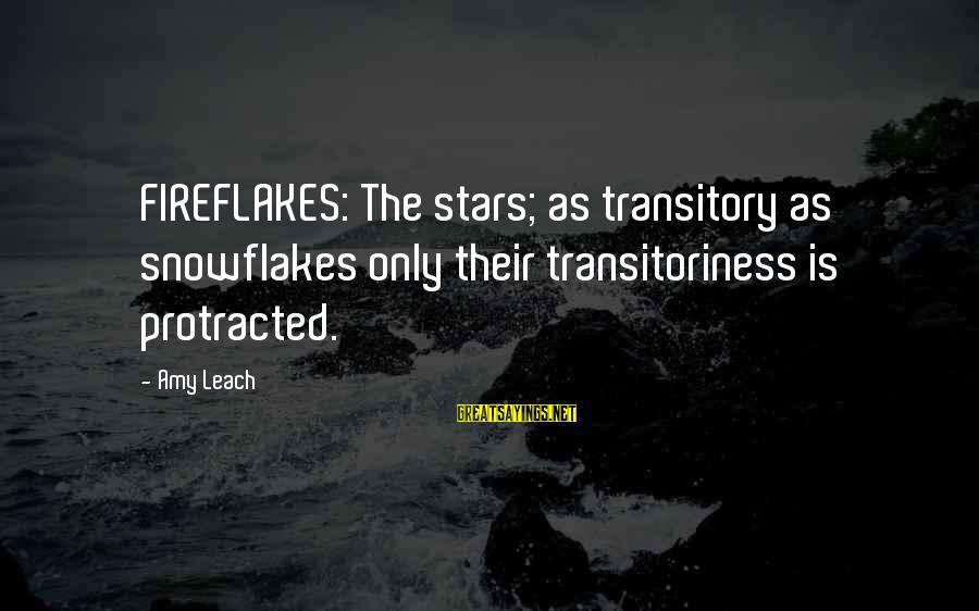 Tentful Sayings By Amy Leach: FIREFLAKES: The stars; as transitory as snowflakes only their transitoriness is protracted.