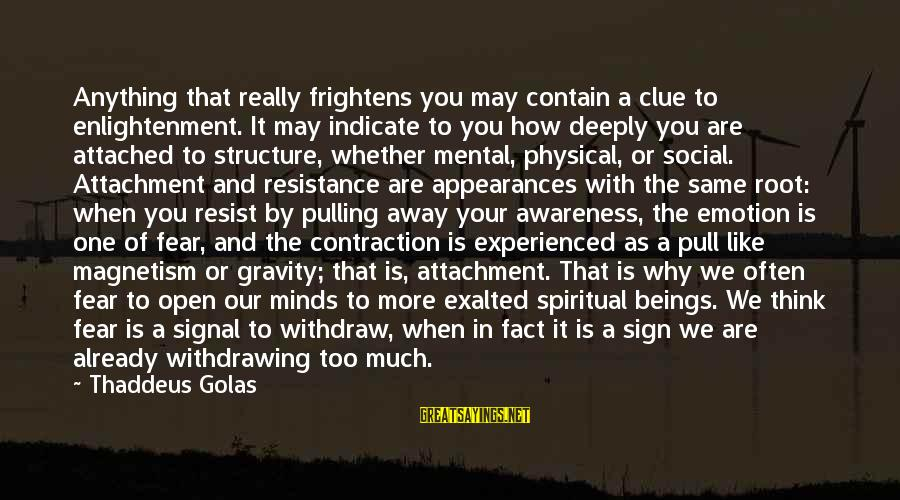 Thaddeus Sayings By Thaddeus Golas: Anything that really frightens you may contain a clue to enlightenment. It may indicate to