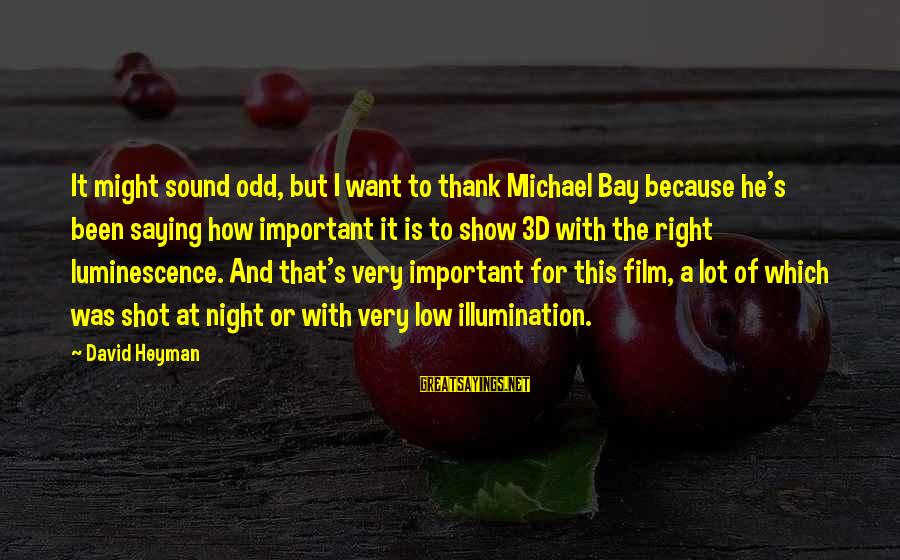 The 3d Sayings By David Heyman: It might sound odd, but I want to thank Michael Bay because he's been saying