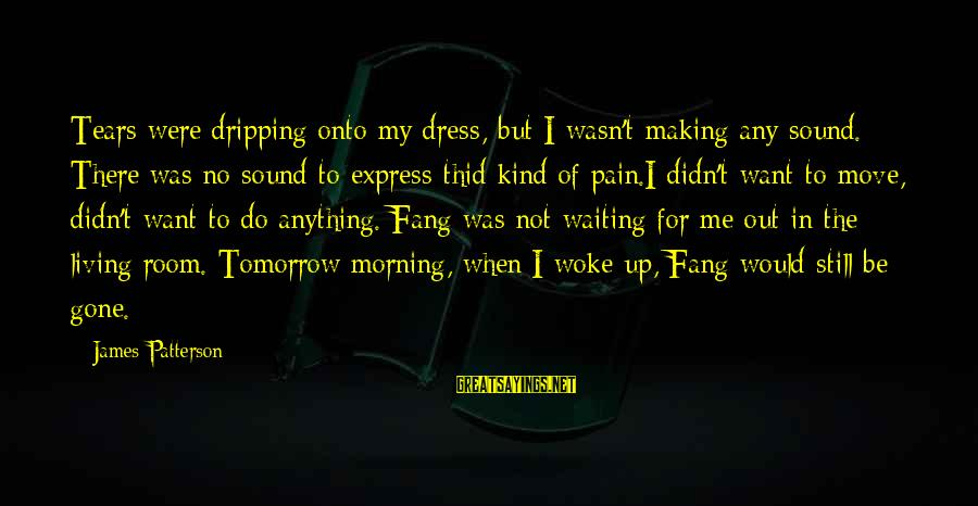 The Dress Sayings By James Patterson: Tears were dripping onto my dress, but I wasn't making any sound. There was no