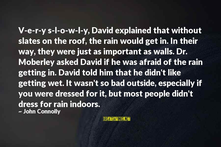 The Dress Sayings By John Connolly: V-e-r-y s-l-o-w-l-y, David explained that without slates on the roof, the rain would get in.